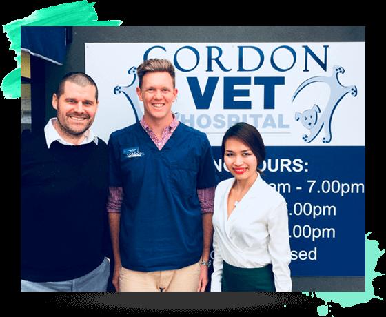 online marketing for vet practices
